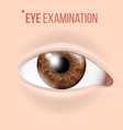 human eye vision concept clinic medical vector image vector image