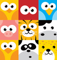 square animal face icon button set vector image