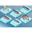 Isometric Fishes on the Sea vector image