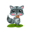 adorable gray raccoon eating tasty cookie and vector image vector image