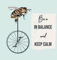 fashion apparel print bee on bicycle vector image vector image