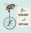 fashion apparel print bee on bicycle vector image