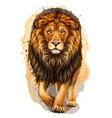 lion artistic color realistic portrait vector image vector image