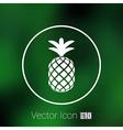 Pineapple closeup cartoon sketch hand drawn vector image vector image