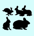 rabbit pet animal action silhouette vector image vector image