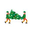 santa elf movers carry christmas tree porters man vector image vector image