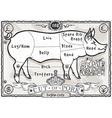 Vintage Page English Cut of Pork vector image vector image