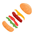 Colorful Burger isolated on with Background vector image vector image