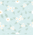 cute flat style tiny white daisy flower on blue vector image vector image