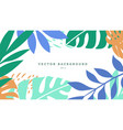 exotic background with colored blooming leaves vector image