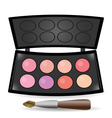 eyeshadow palette vector image