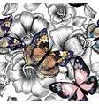 seamless wallpaper pattern with vintage butterfly vector image