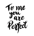 You are perfect calligraphic poster vector image