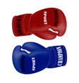 boxing gloves in the vector image