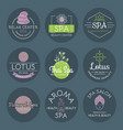 health and beauty care spa badge hand drawn vector image vector image