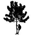 little boy climbing tree vector image vector image