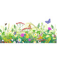 seamless border with summer meadow plants and vector image vector image