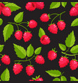 seamless pattern with cartoon raspberries vector image vector image