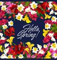 springtime flowers seasonal poster vector image vector image