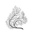stylized branches squirrel for use as logos on vector image vector image