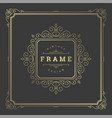 vintage flourishes ornament frame template vector image vector image