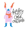with cute rabbit socks hat and scarf vector image