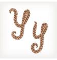 Braids hair font vector image vector image