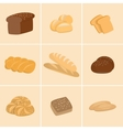 Different kinds of bread set vector image vector image