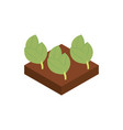 farm sprout harvest agriculture isometric icon vector image