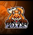 foxes esport logo mascot design vector image vector image