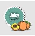 FruitsBanners4 vector image