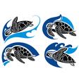 Sea turtles vector image vector image