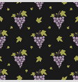 seamless pattern with grapes and leaves on simple vector image vector image