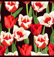 seamless pattern with red and white tulips vector image vector image