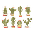 cactuses floral hand drawn vintage vector image