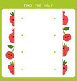 find half for fruits vector image vector image