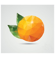 Geometric polygonal fruit triangles orange vector image vector image