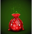 Gift bag vector image vector image