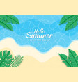 hello summer background with leaves on beach vector image vector image