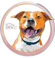sketch smiling dog American Staffordshire vector image vector image