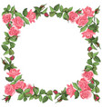 template with roses and leaves isolated on white vector image