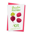 beetroot poster banner cartoon flat style vector image vector image