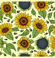 seamless pattern with yellow sunflowers vector image vector image