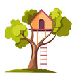 tree house with rope ladder on daylight vector image