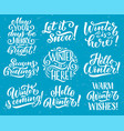 winter seasonal holiday quote lettering vector image