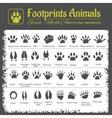 Animal Tracks - North American animals vector image vector image