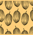 engraved pattern of cocoa beans vector image