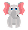 isolated cute elephant vector image vector image