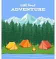 outdoor camping nature background with river vector image