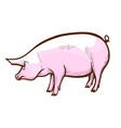 pig hand drawn icon swine piglet hog-raising vector image vector image